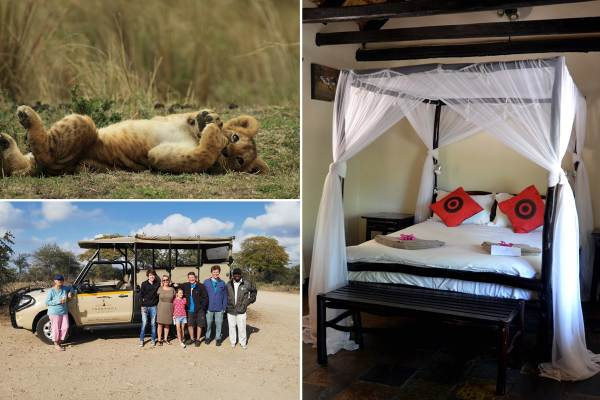 Kruger Park Private Lodge Safari
