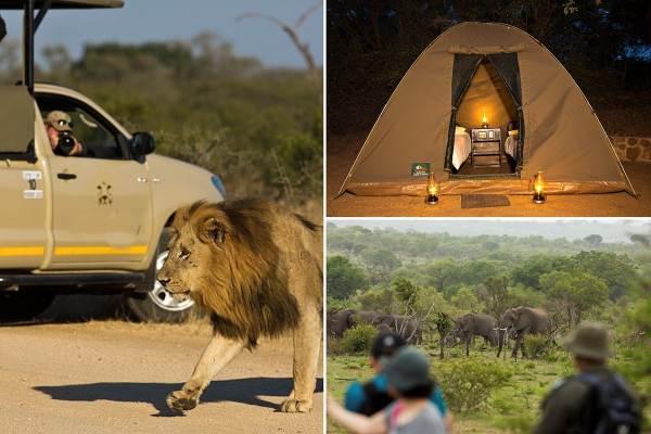 Kruger Park Budget Camping Safari Package