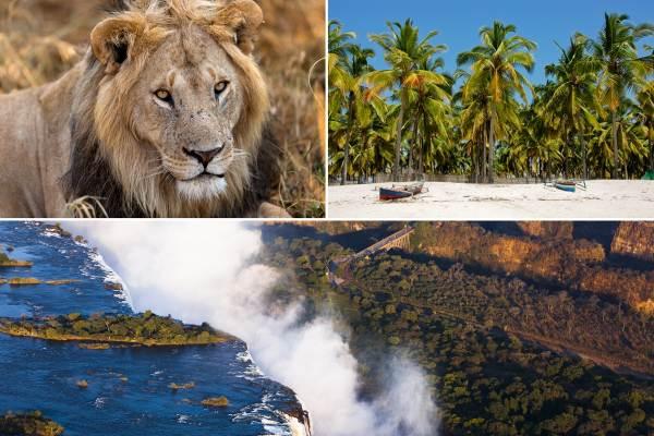 Cape Town to Victoria Falls & Mozambique Camping Tour