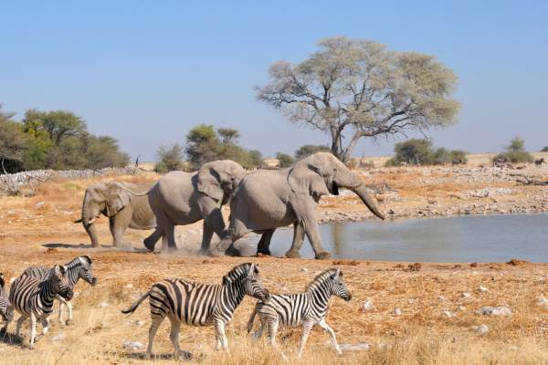 Namibia, Botswana and Victoria Falls Overland Tour