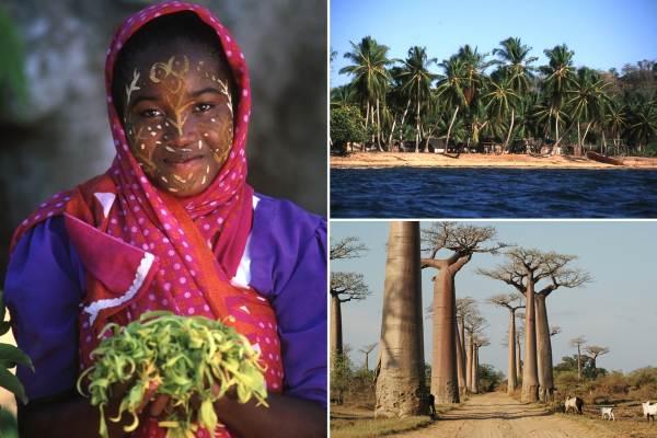Madagascar Baobabs Safari Package